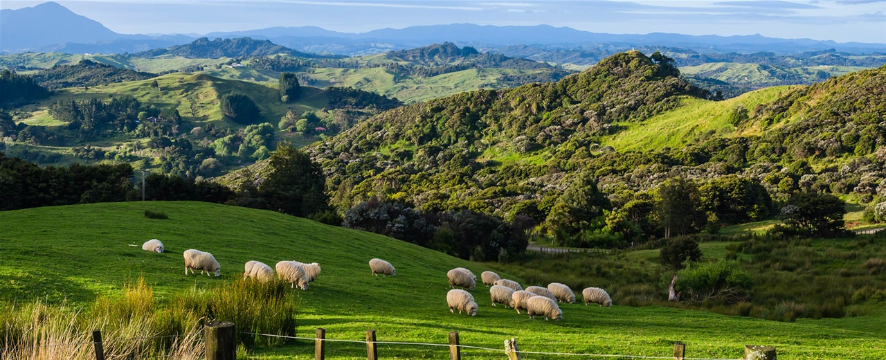 βιντεο νεα ζηλανδια Hd: Προορισμός Νέα Ζηλανδία